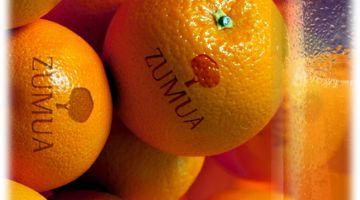 Naranjas de Zumo o Mesa