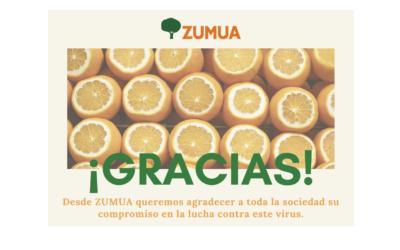 Gracias por confiar en ZUMUA en 2020!